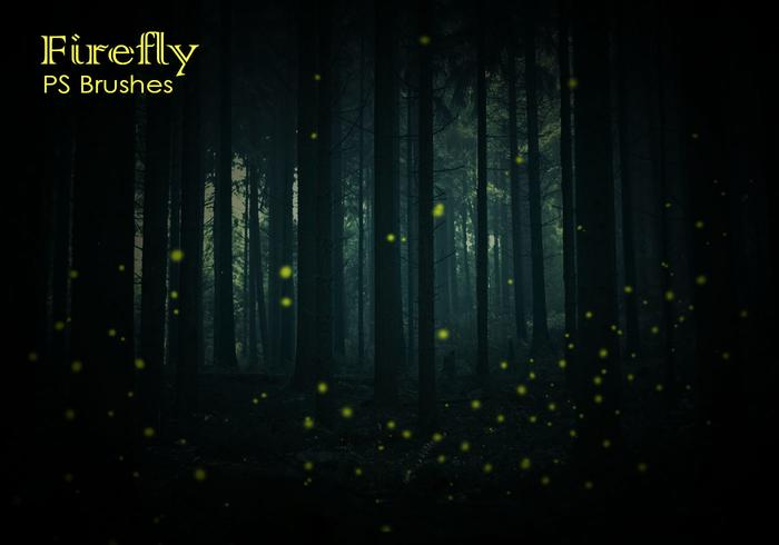 20 Firefly PS Brushes abr vol.6