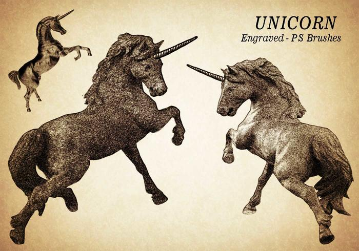20 Unicorn Gravierte PS Bürsten abr. Vol.8
