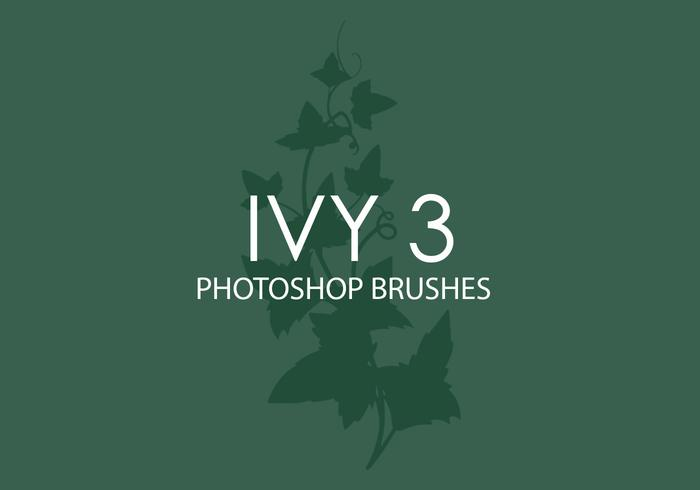 Ivy Photoshop Brushes 3