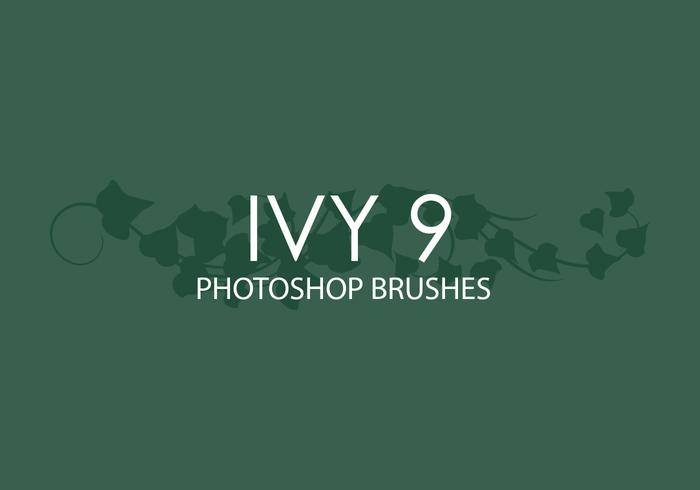 Ivy Photoshop Brushes 9