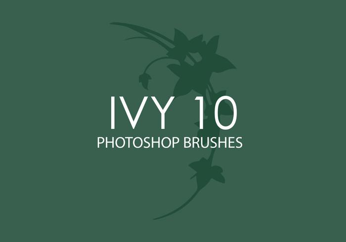 Ivy Photoshop brosses 10