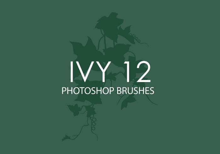 Ivy Photoshop Pinsel 12
