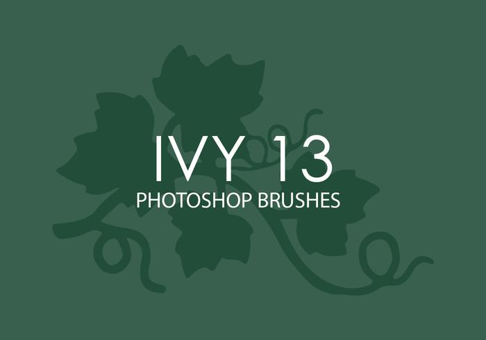 Ivy Photoshop Brushes 13