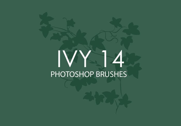 Ivy Photoshop Brushes 14