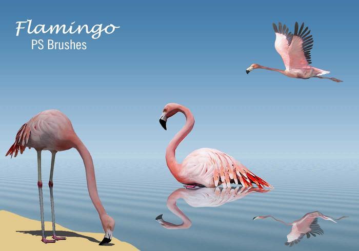 20 Flamingo PS Bürsten.abr Vol.4