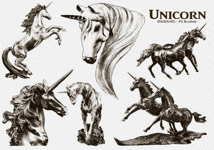 20 brosses PS Unicorn gravées abr. Vol.10