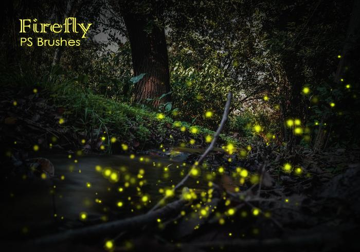 20 Firefly PS Brushes abr vol.10