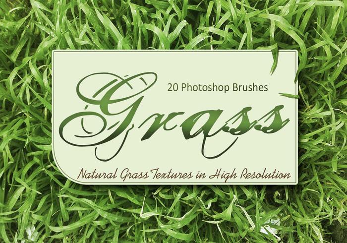 20 Texture d'herbe PS Brushes.abr vol.1