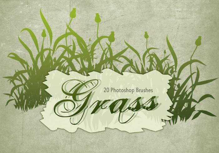 20 Gras Silhouette PS Brushes.abr Vol.8