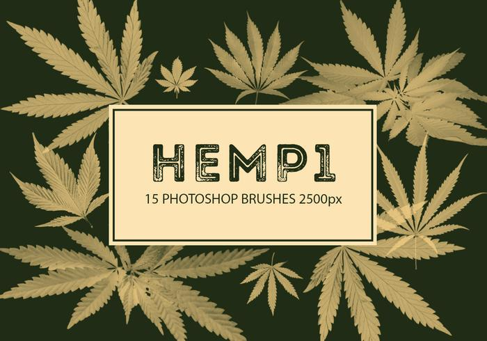 Hemp Photoshop Brushes 1