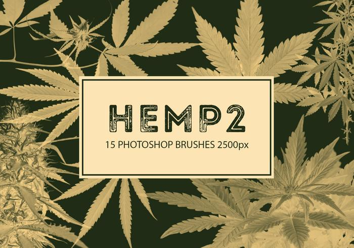 Hemp Photoshop Brushes 2