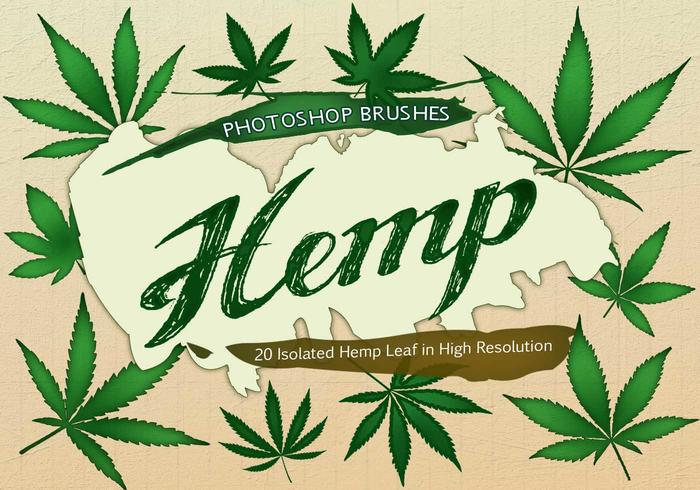 20 Hemp Leaf PS Brushes abr. Vol.2