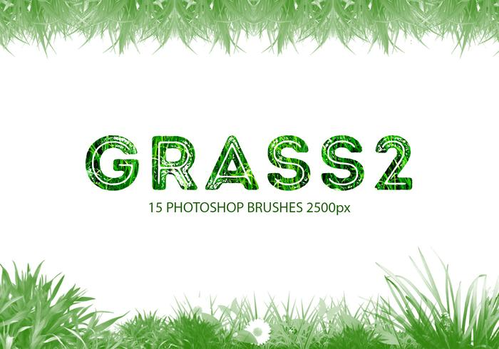 escovas do photoshop Grass 2