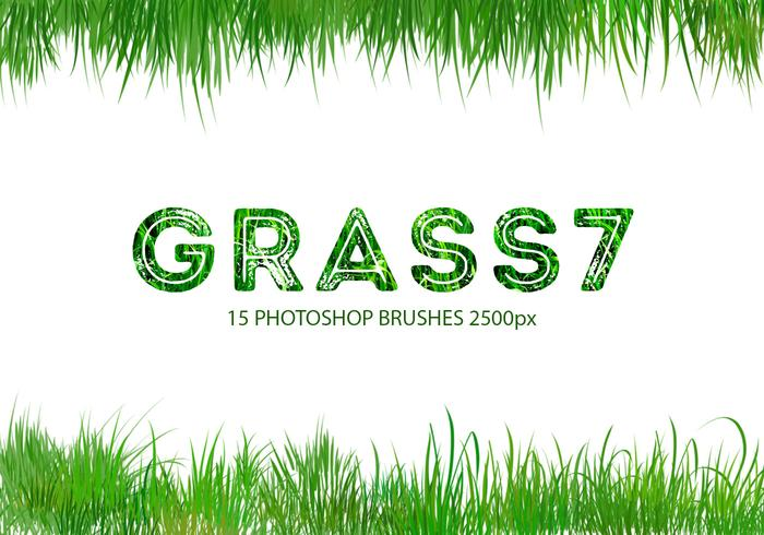escovas do Photoshop Grass 7
