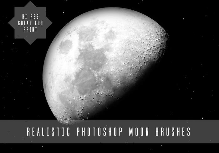 Salut Res Moon Brushes