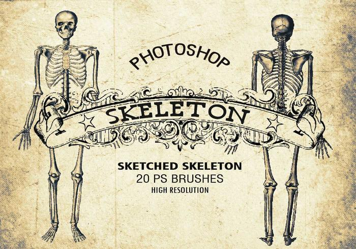 20 Sketched Skeleton PS Bürsten abr. Vol 1
