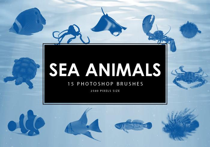 Sea Animals Photoshop Pinsel