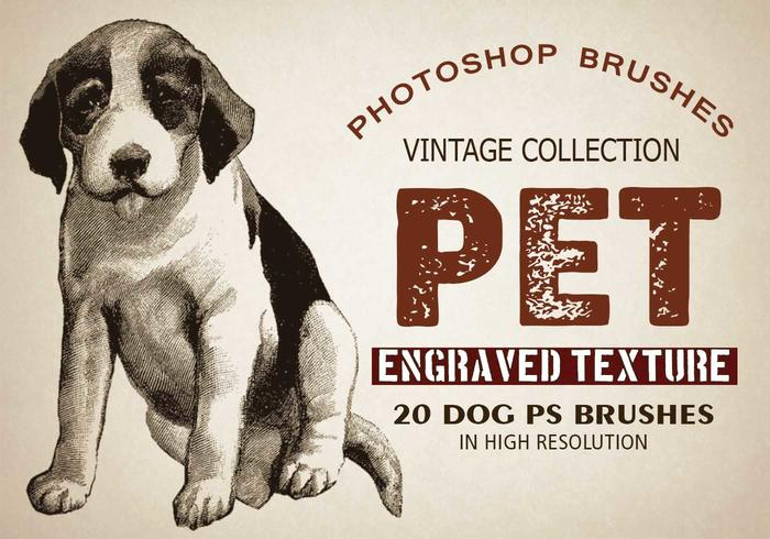 "20 Pet ""Dogs"" PS-borstels"