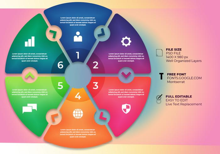 Ontwerp Infographic Workflow Layout Diagram Stappen Bussiness Concept