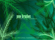 Pine-brushes-by-hawksmont300