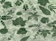 Leaves_photoshop_brushes_by