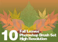 High Res Real Leaf Brushes