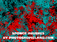 Sponge Brushes - High Resolution
