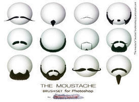 The_moustache_by_peterplastic