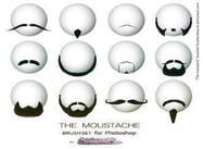 The Mustache Brush set