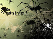 Spiders Brushes