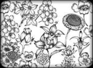 Hand Drawn Flowers Free Brush Pack