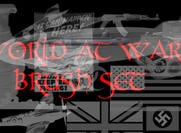 world at war brush set