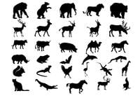 Animal Silhouettes Borstar