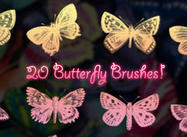 20 Brosses papillon