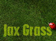Jax Grass Brushes