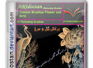 Iranian Brushes Flower and Bird