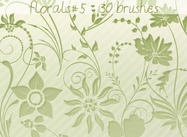 Floral Brushes 5