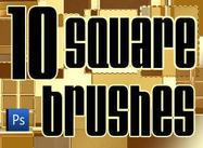10 quadratische Bürsten