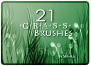 Cepillos de hierba