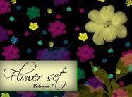 Blumen-Set
