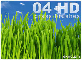Grass-brushes-by-exirc.com-thumnail