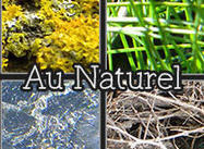 Au Naturel--Nature-y Textures