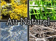 Au Naturel - Nature-y Textures