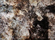 Stenstruktur