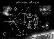 Pioneer Plaque Brushes