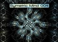 Symetric Mind 004 Bürsten