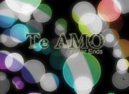 Le site de Te Aom