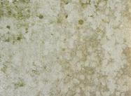 Grunge textura