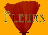 Fleurs_title