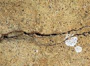 Free Cracked Wall Texture